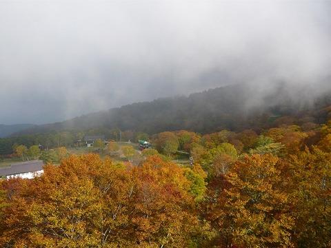 美しい紅葉にかかる山霧、「小毛無山」は冬間近。